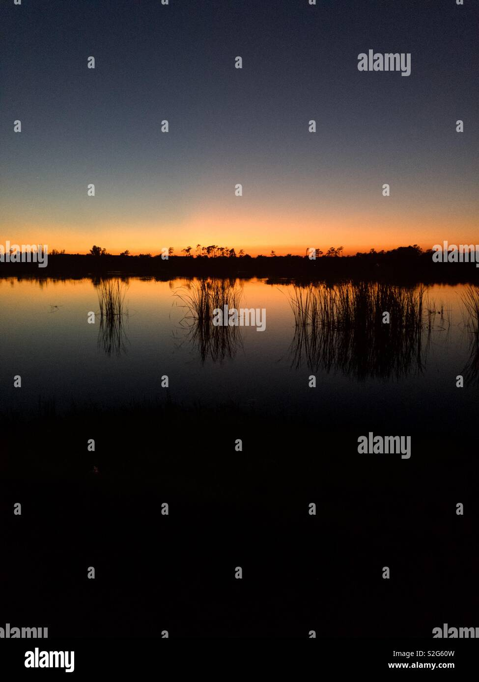 Florida sunset - Stock Image