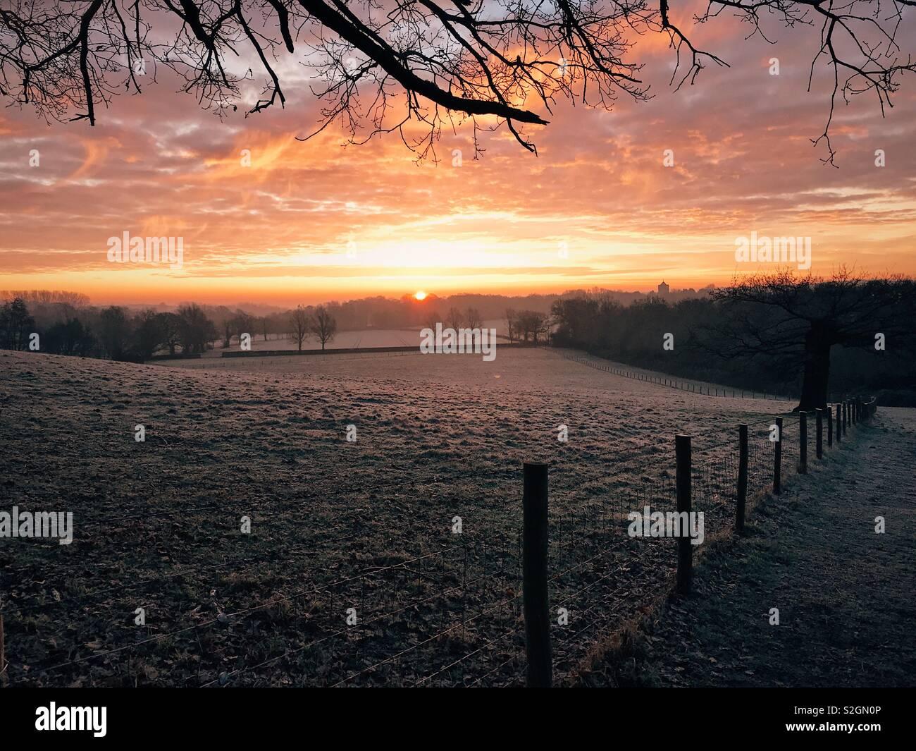 Sunrise, Shipbourne, Kent, UK. 24th January 2019 - Stock Image