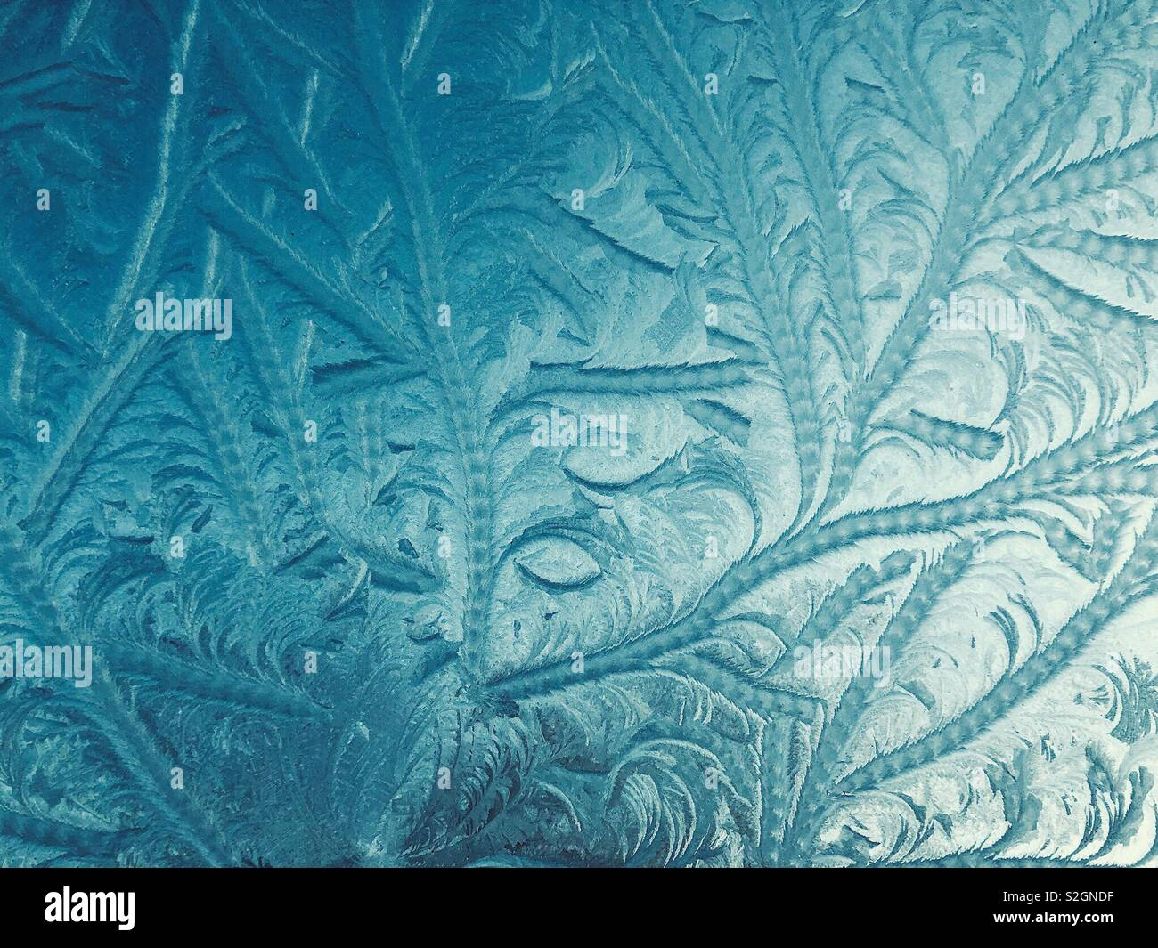 Frozen patterns painted by Jack Frost - Stock Image