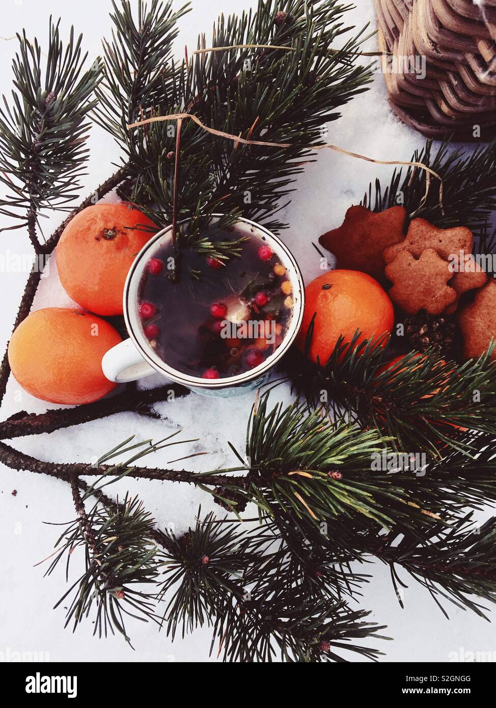 Winter picnic with aromatic tea, ginger bread  and clementines - Stock Image