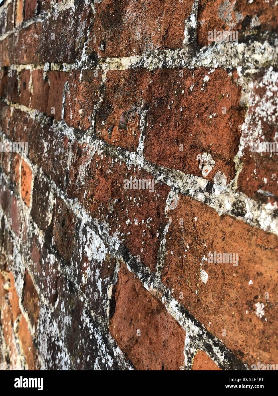 Victorian red bricks - Stock Image