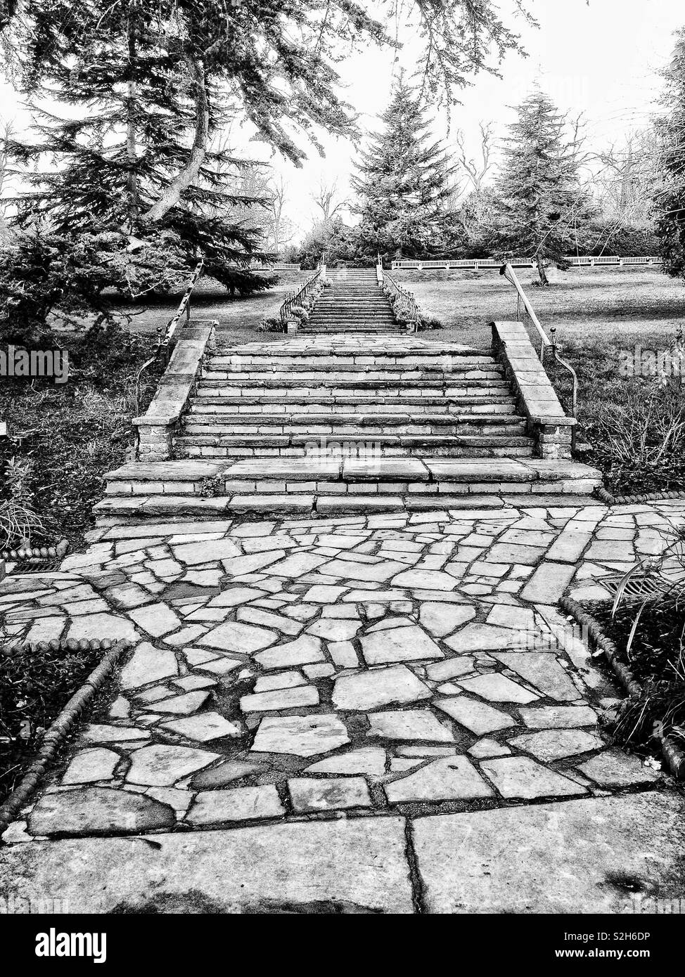 Tiered stone steps leading to benches in a London park - Stock Image