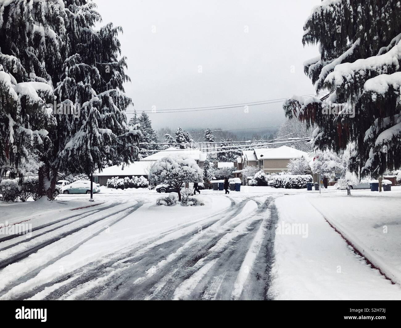 First snow of the season in Issaquah, WA - Stock Image