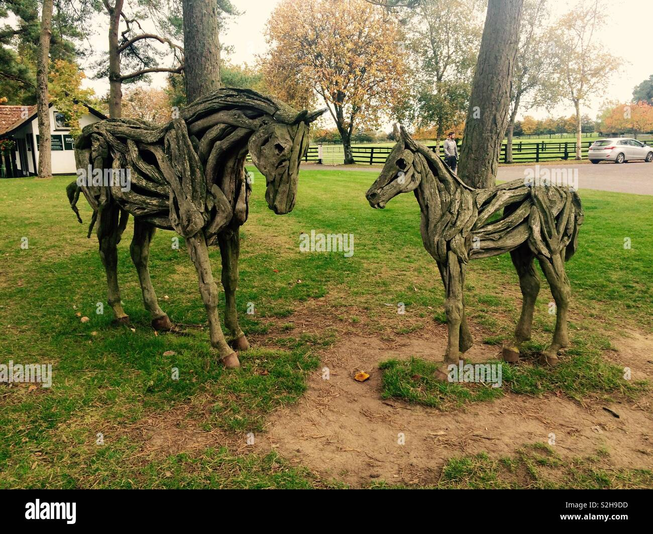 Rustic Wooden Horse Sculpture In The Gardens Of The Irish National Stud In Kildare Ireland Stock Photo Alamy