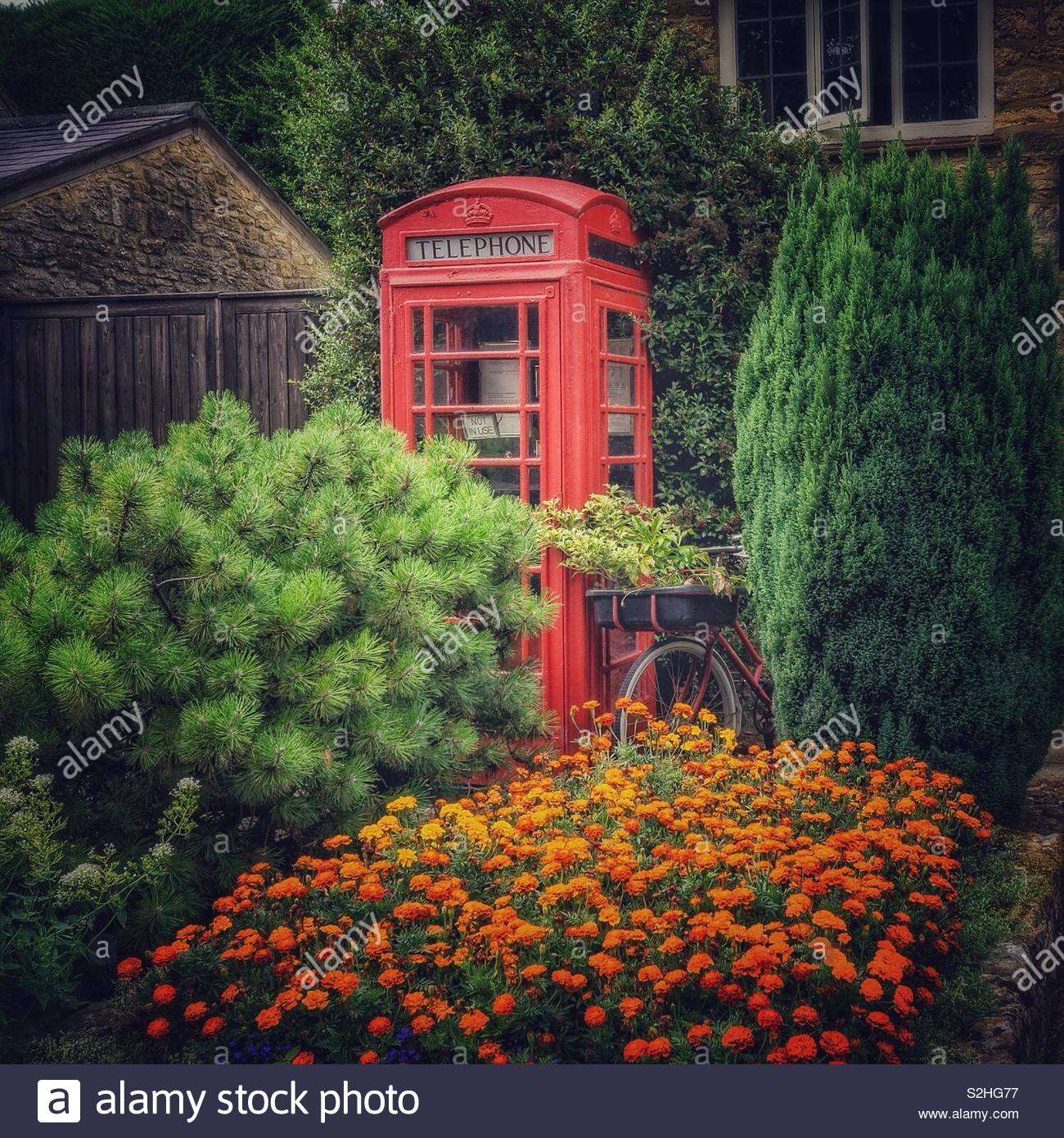 Old red telephone kiosk and vintage bicycle in the garden of an old post office, Weston Underwood, UK. - Stock Image
