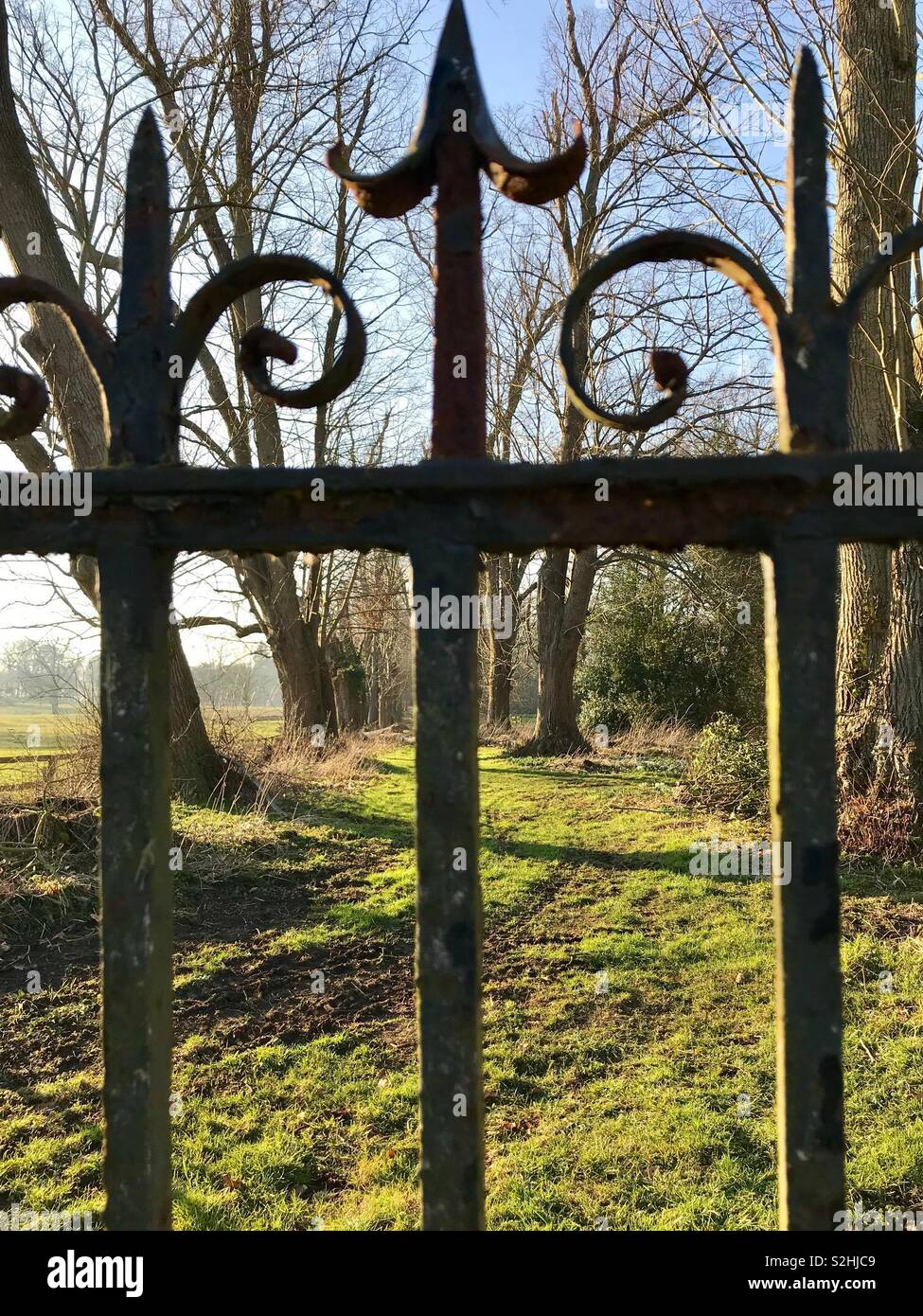 Cast iron railings in an historic parkland. - Stock Image