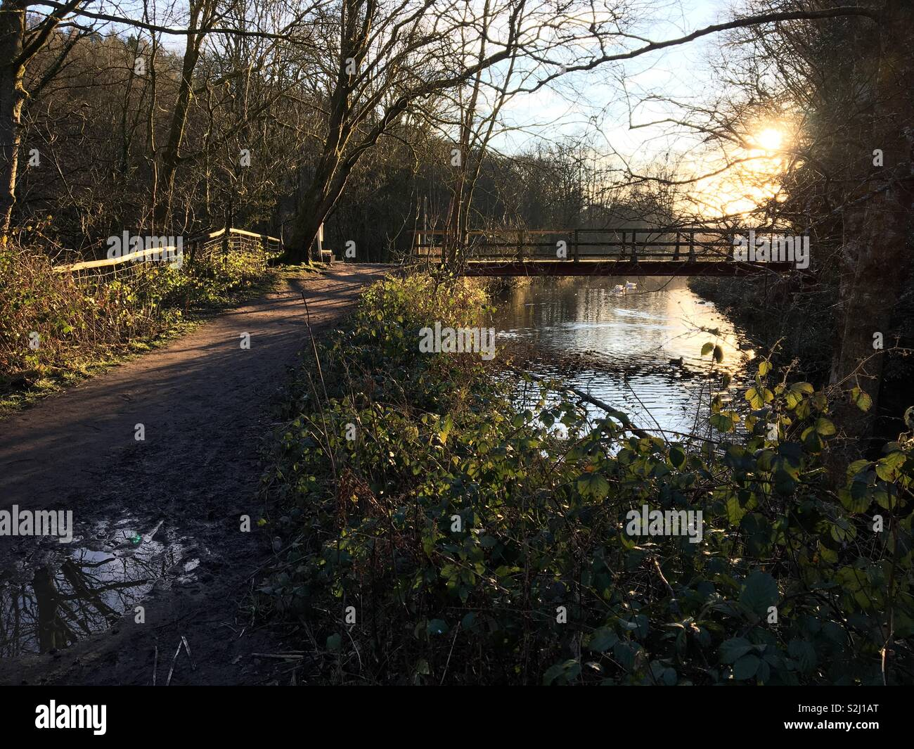 Canal bridge and towpath at sunset - Stock Image