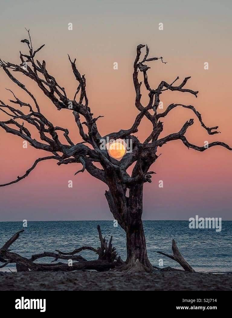 Sunset in Michigan! - Stock Image