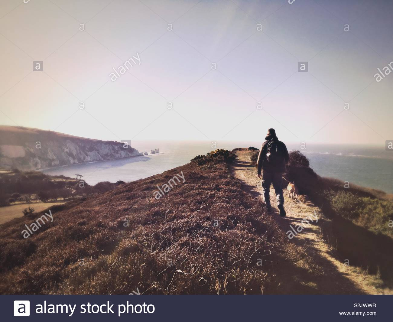 The Needles from Headon Warren, Isle Of White - Stock Image