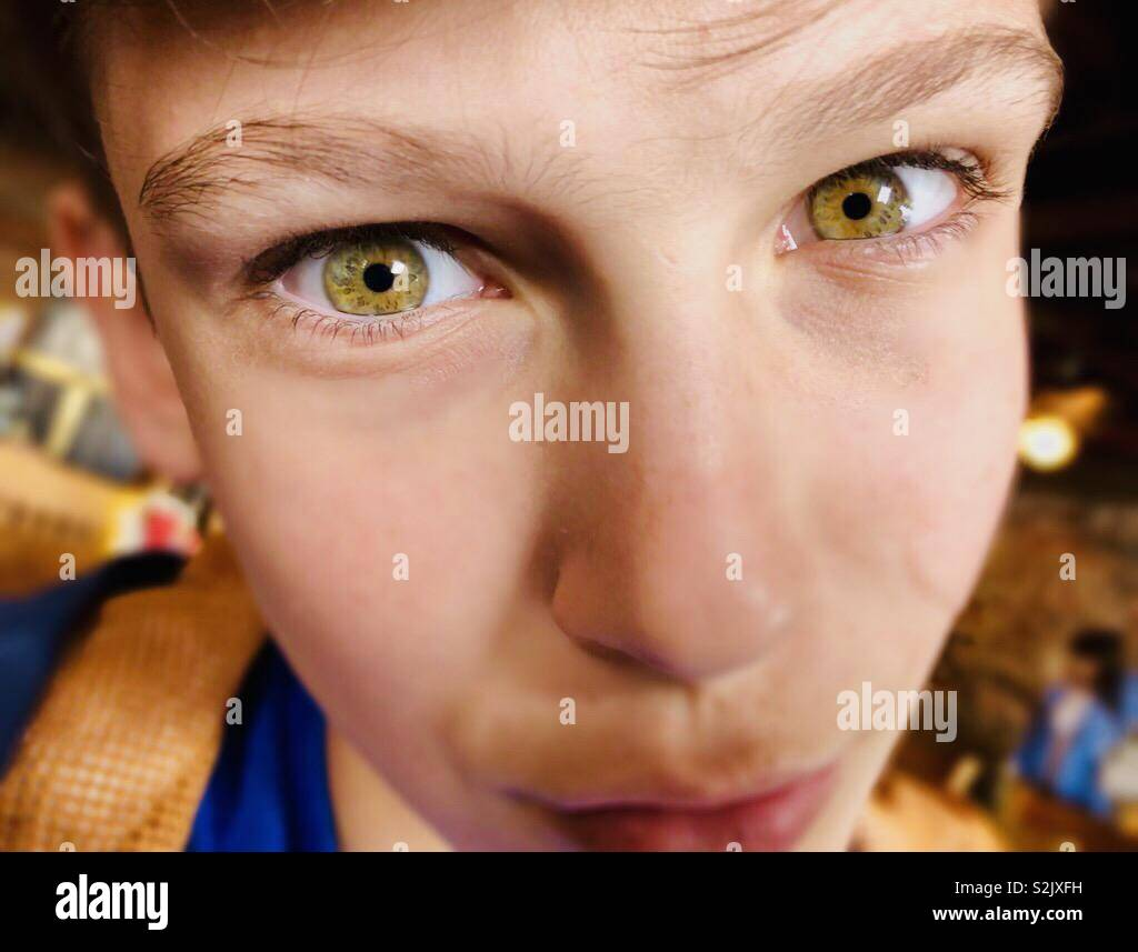 Teenage boy with green eyes - Stock Image