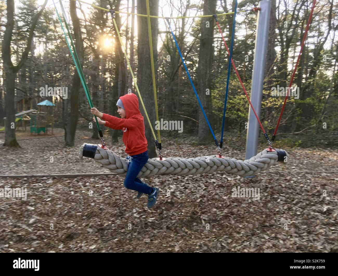 Child swinging in forest playground - Stock Image