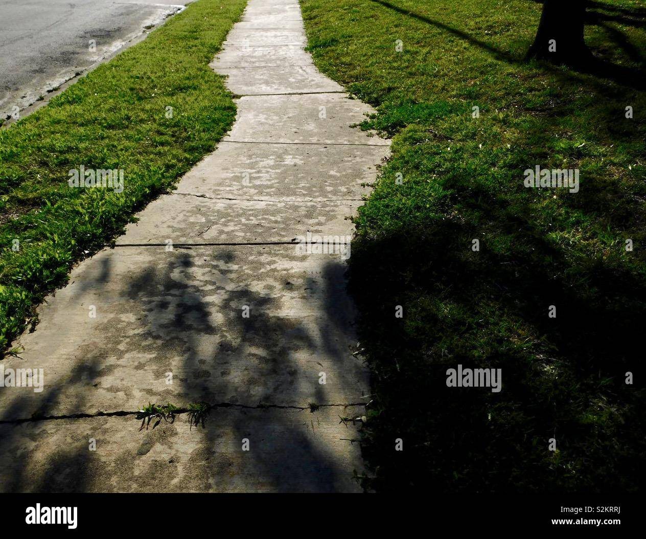 Afternoon sidewalk lit up with sunshine, surrounded by bright green grass, and shaded by trees giving shadows. - Stock Image