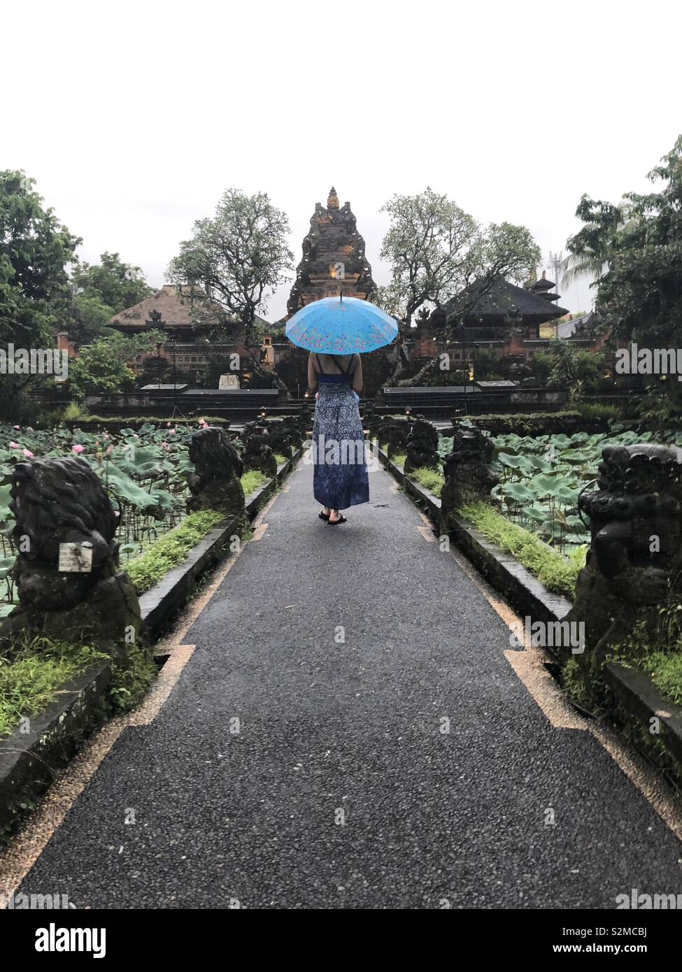 Rainy day In ubud - Stock Image