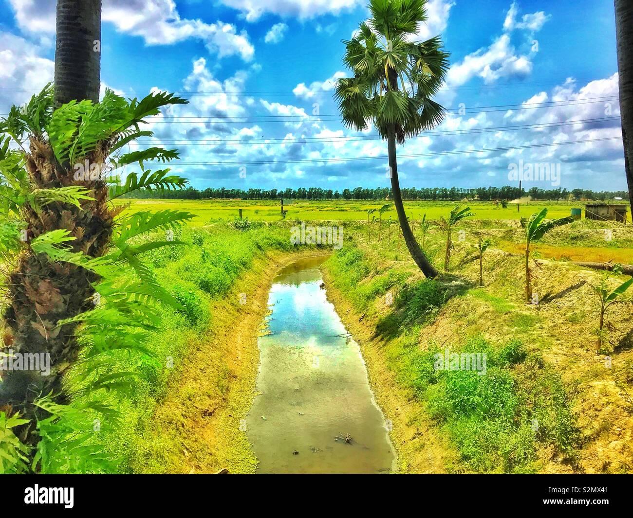 Natural Beauty of Bangladesh Stock Photo: 311475473 - Alamy