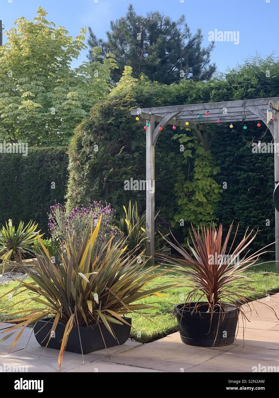 Garden with pergola - Stock Image