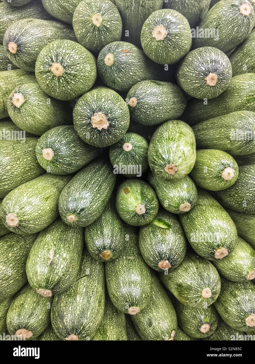Full frame fresh delicious Mexican zucchini on display and for sale at the local produce market. - Stock Image