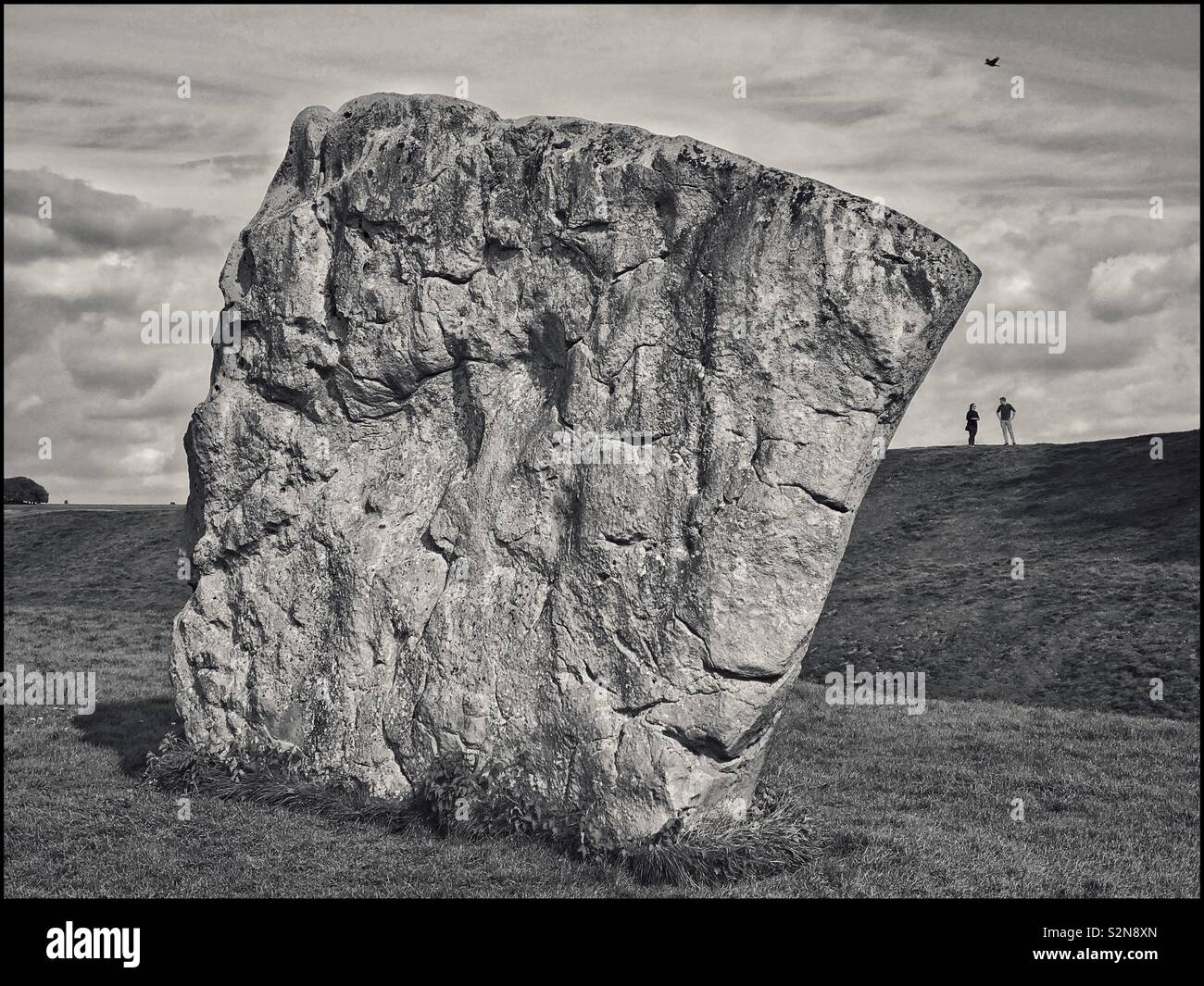 One of the large Standing Stones that forms the inner circle in the SE Section of the Avebury Stone Circle in Wiltshire, England. This stone forms part of the World's Largest Stone Circle. © C.HOSKINS - Stock Image
