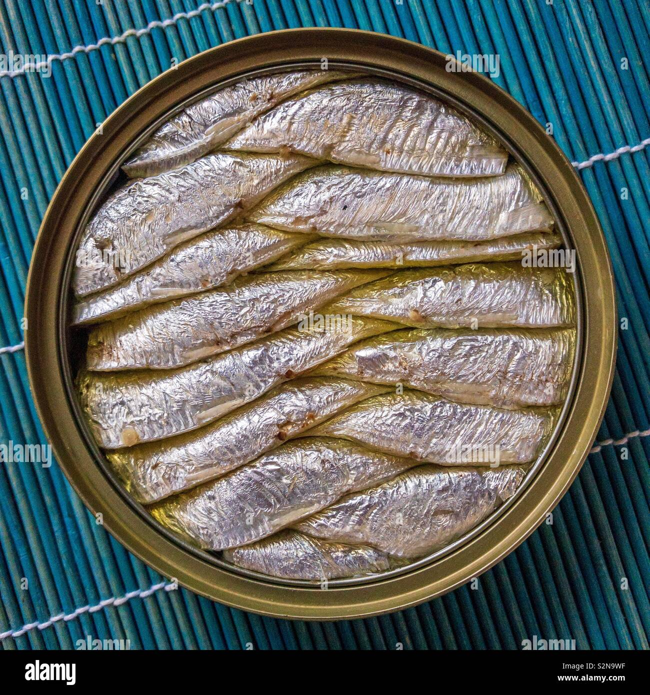 Open can of brisling. Also known as the European sprat, bristling, garvie, skipper, whitebait or Russian sardine. - Stock Image