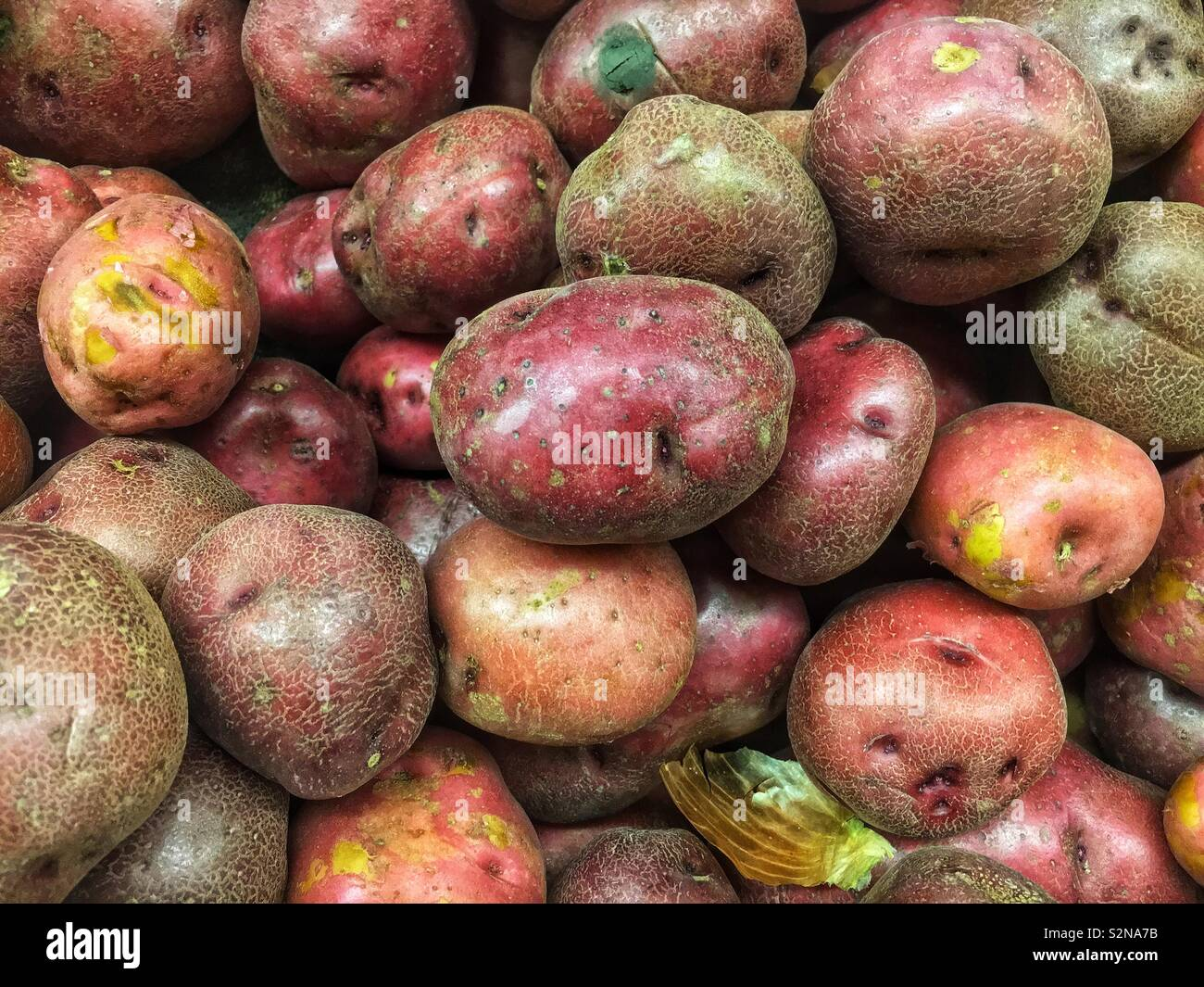 Raw perfect red potatoes on display and for sale at the local produce market. - Stock Image