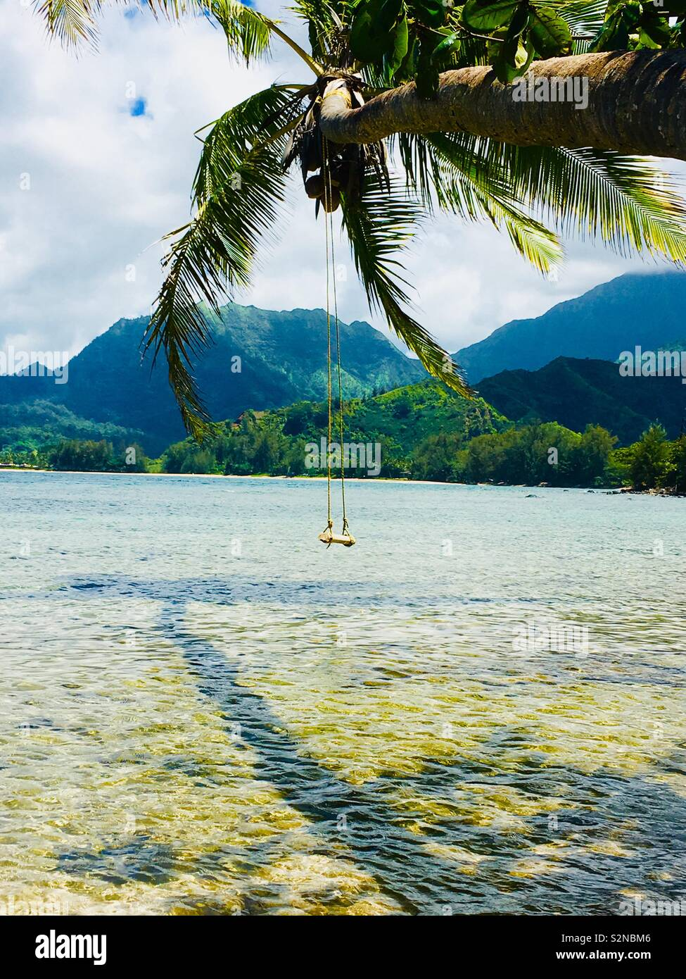 A beautiful secret beach with a coconut tree and swing in North Shore Kauai. Stock Photo