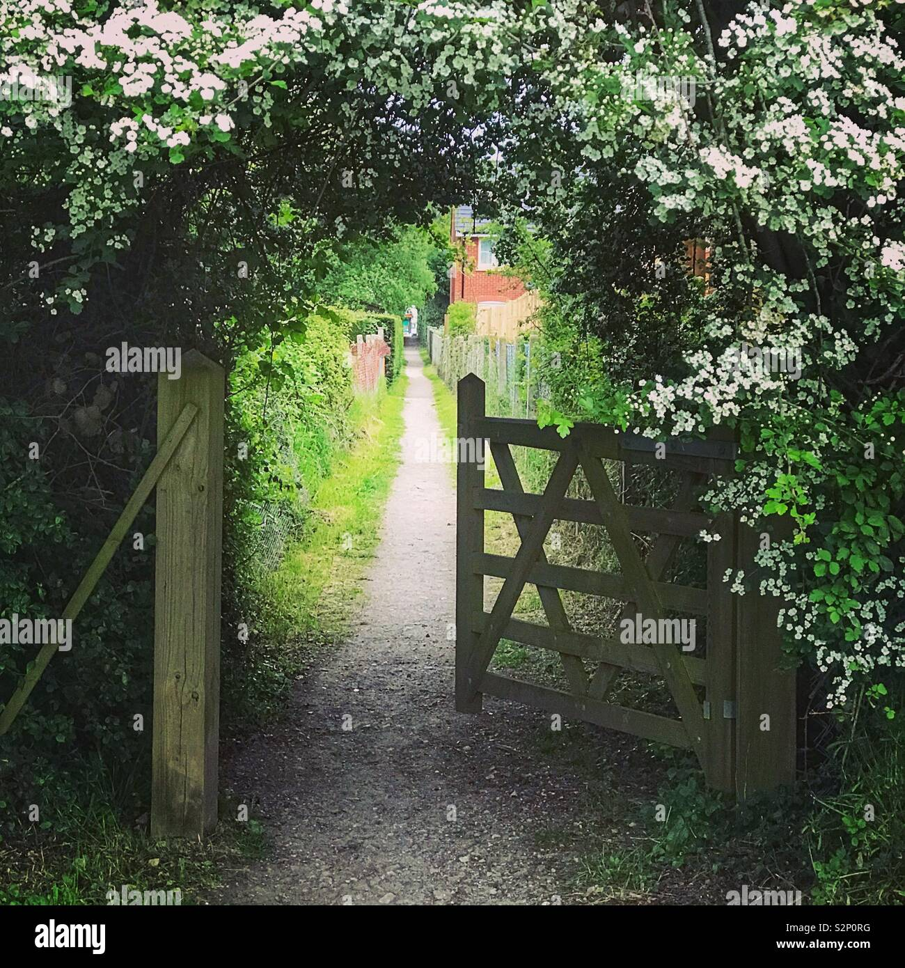 Through the gate and follow the path - Stock Image