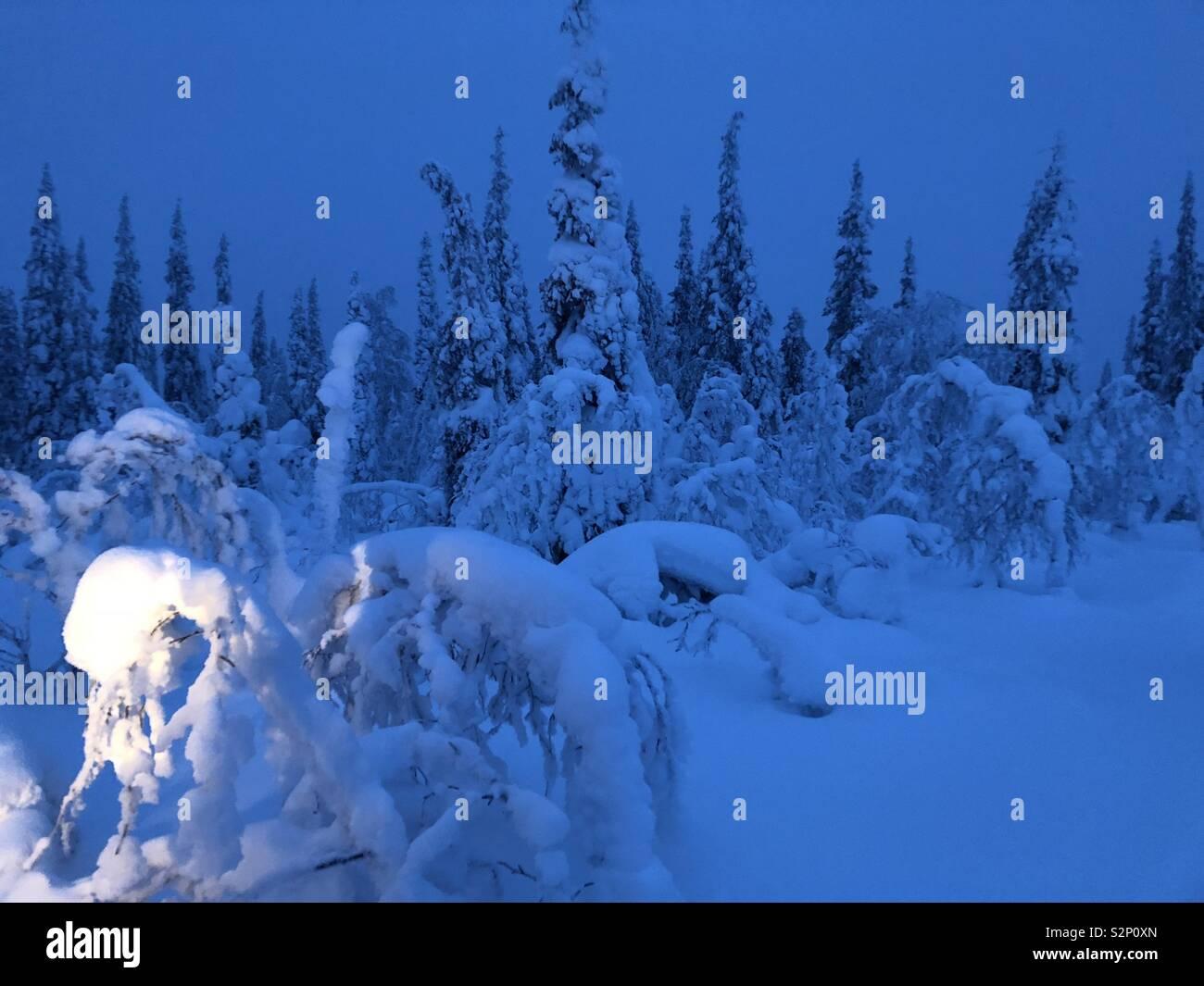 Swedish Lapland 110km inside the arctic circle - Stock Image