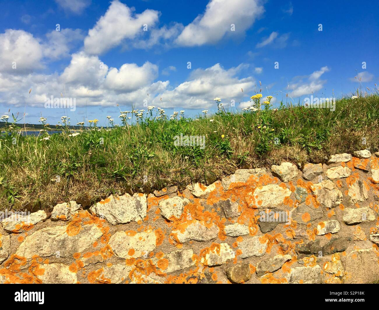 Landscape with stone wall in Canada during summer Stock Photo