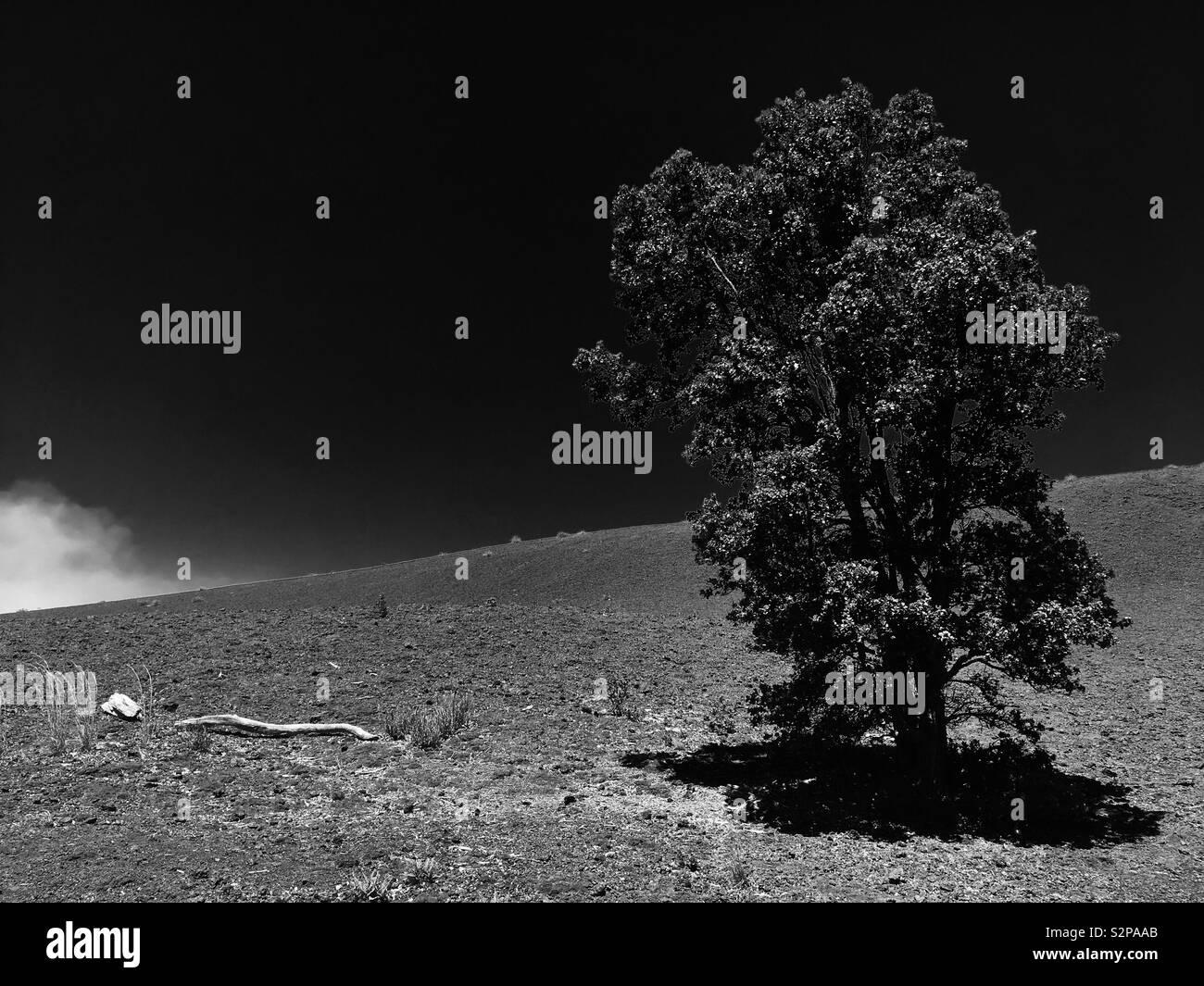 Desolation Trail - Stock Image