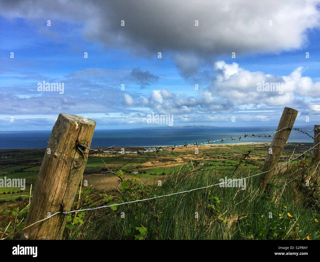 View over the fence - Stock Image