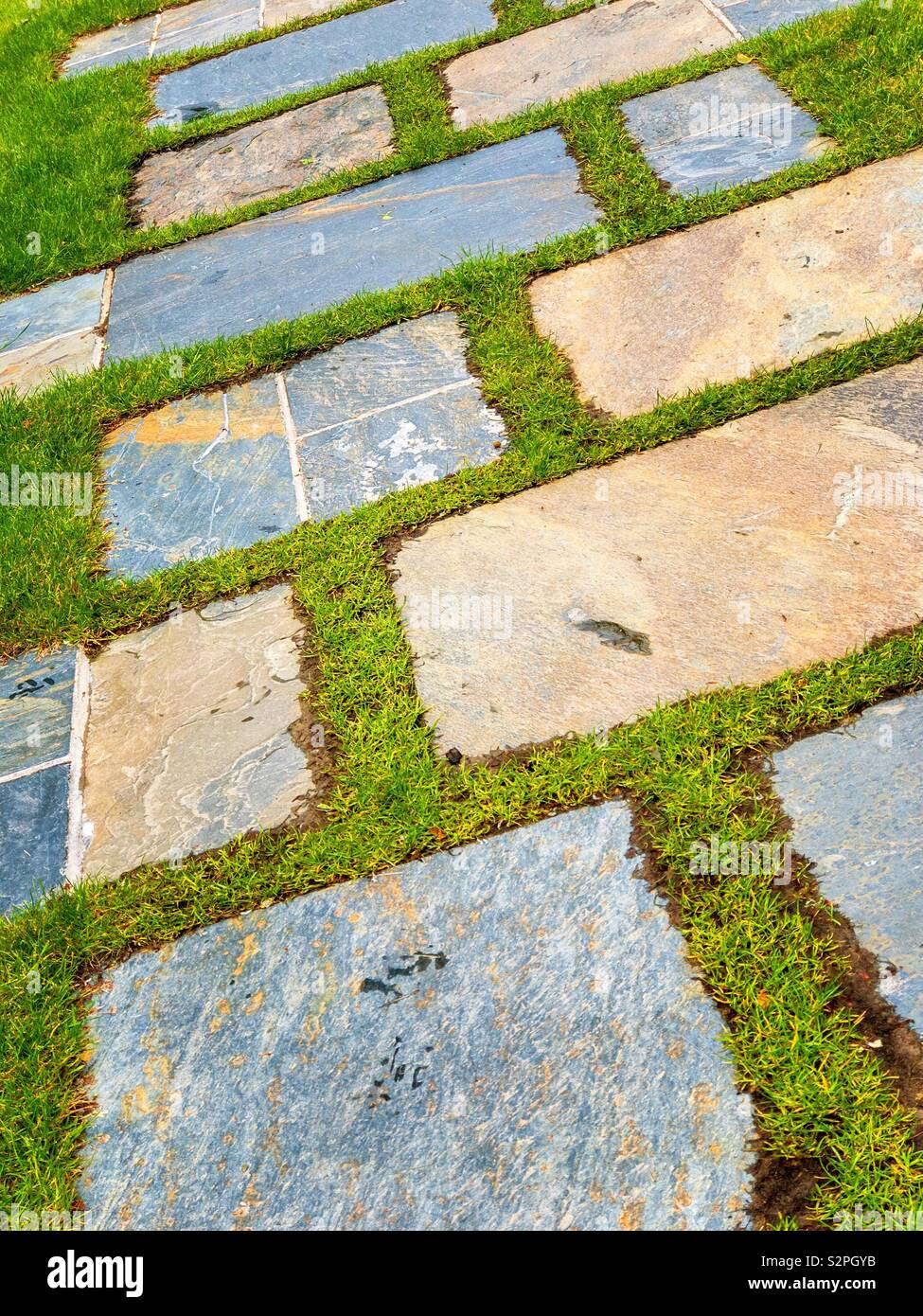 Path of stone paving slabs laid in grass. Stock Photo