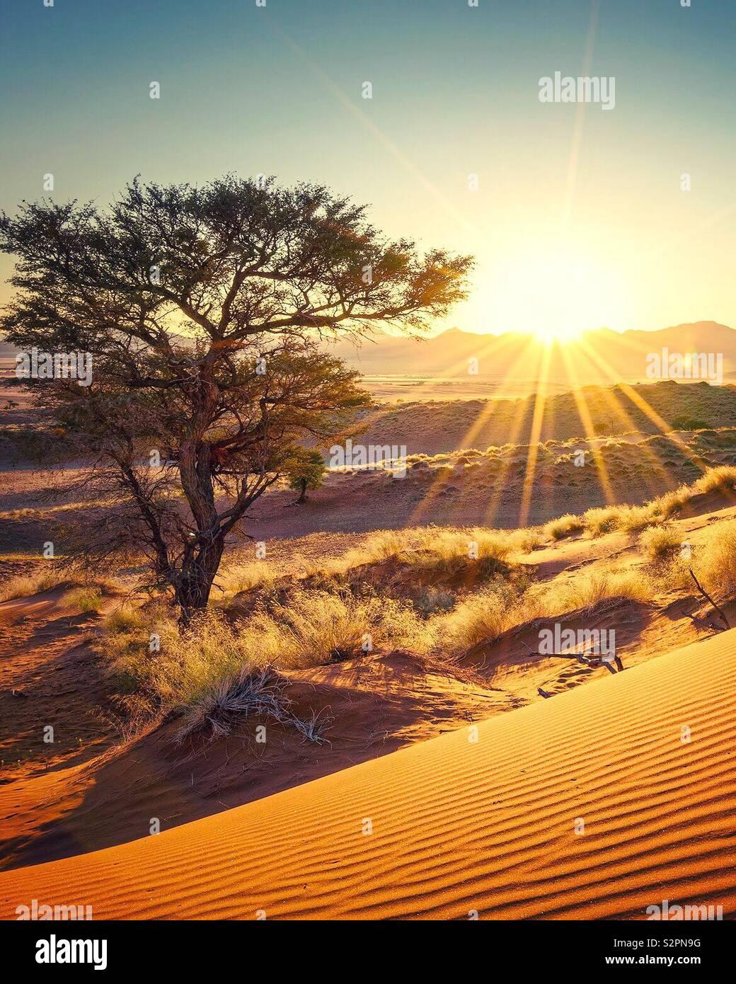 Sun rising on the desert of Namibia Stock Photo