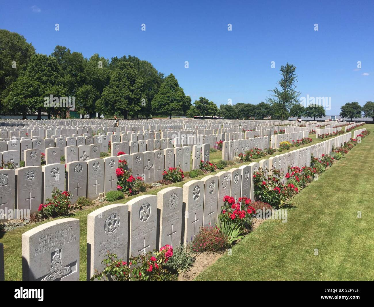 Commonwealth War Graves of those killed in World War I, Belgium - Stock Image
