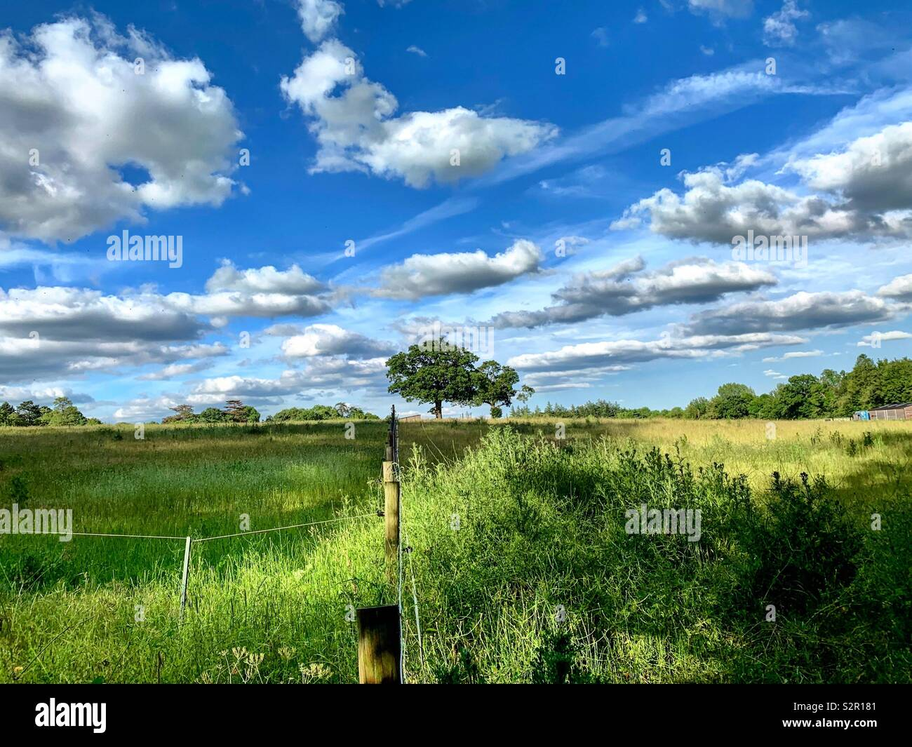 View from the lane - Stock Image