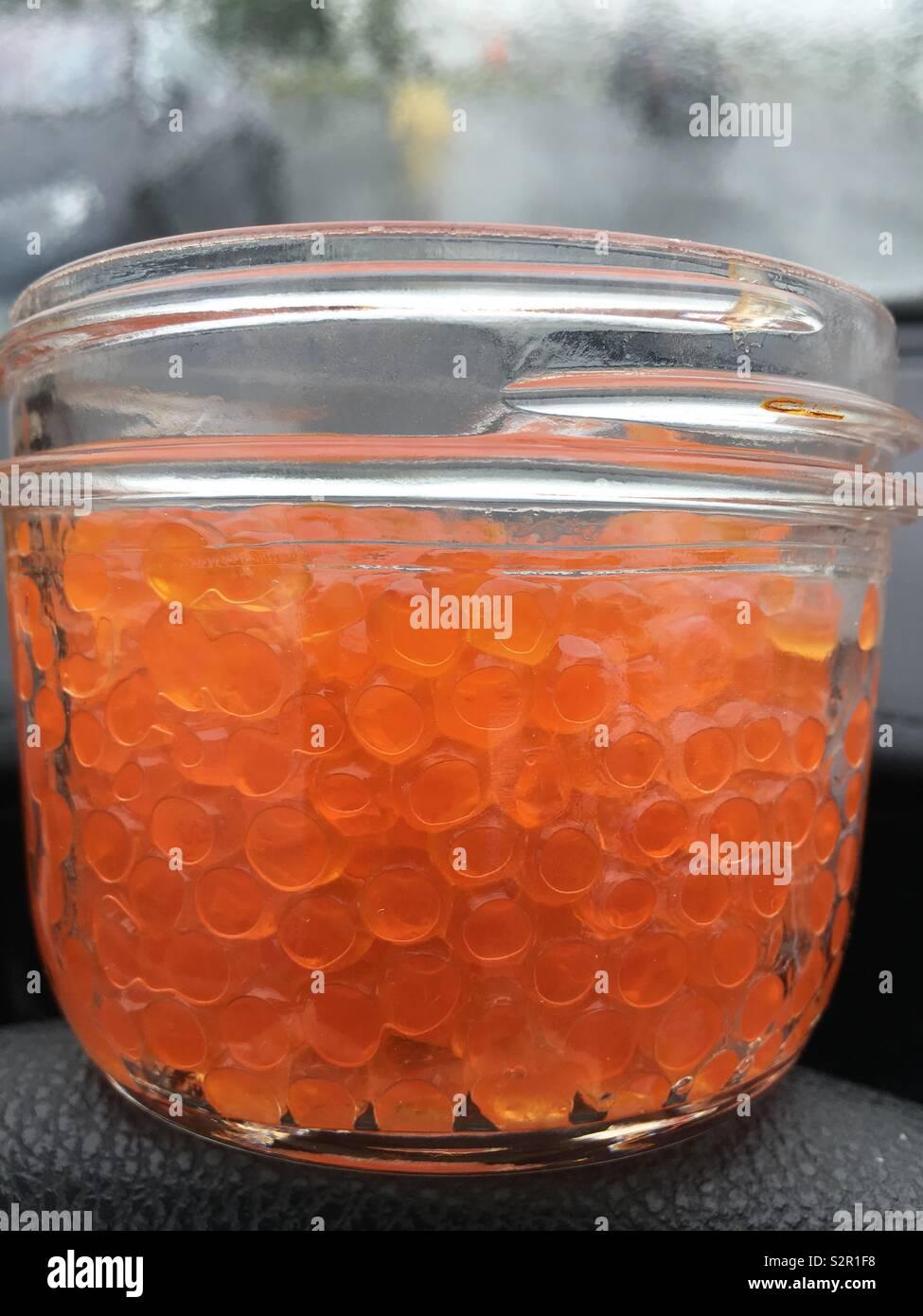 Glass jar of salmon caviar - Stock Image