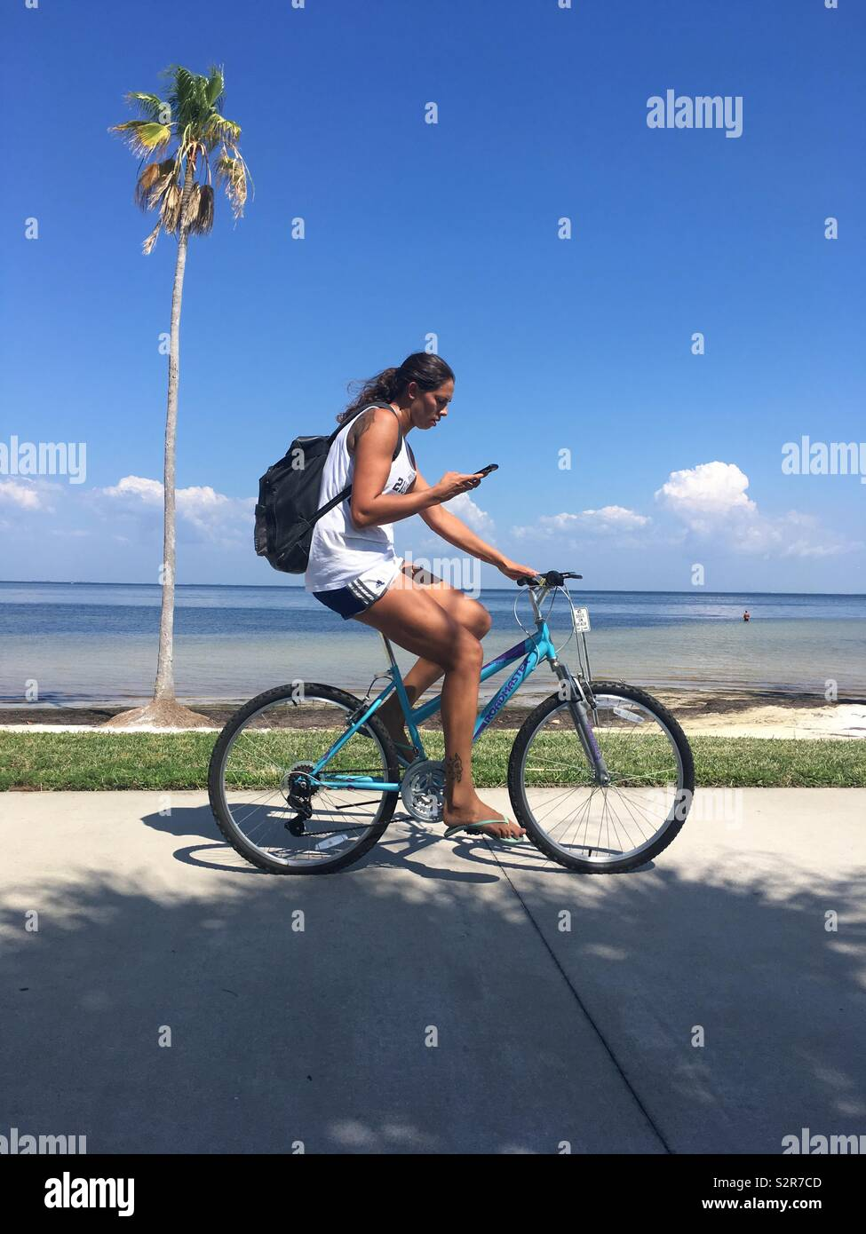 Woman on bike using cell phone while cycling past a palm tree - Stock Image