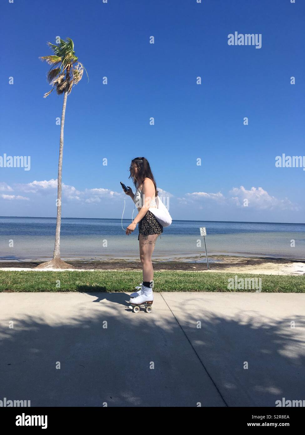 Woman roller skating past palm tree using cell phone - Stock Image