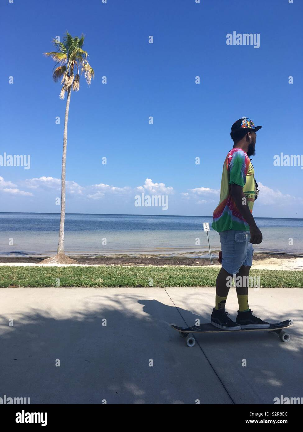 Man in colourful top on skateboard by a palm tree and the sea - Stock Image