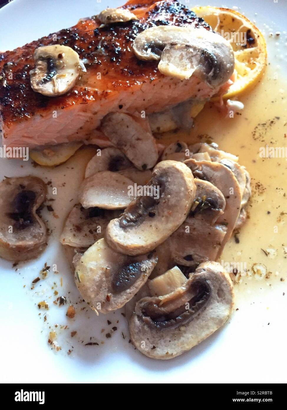 Gourmet entrée of broiled salmon fillet on a bed of lemon slices with fresh mushroom sauce, USA - Stock Image