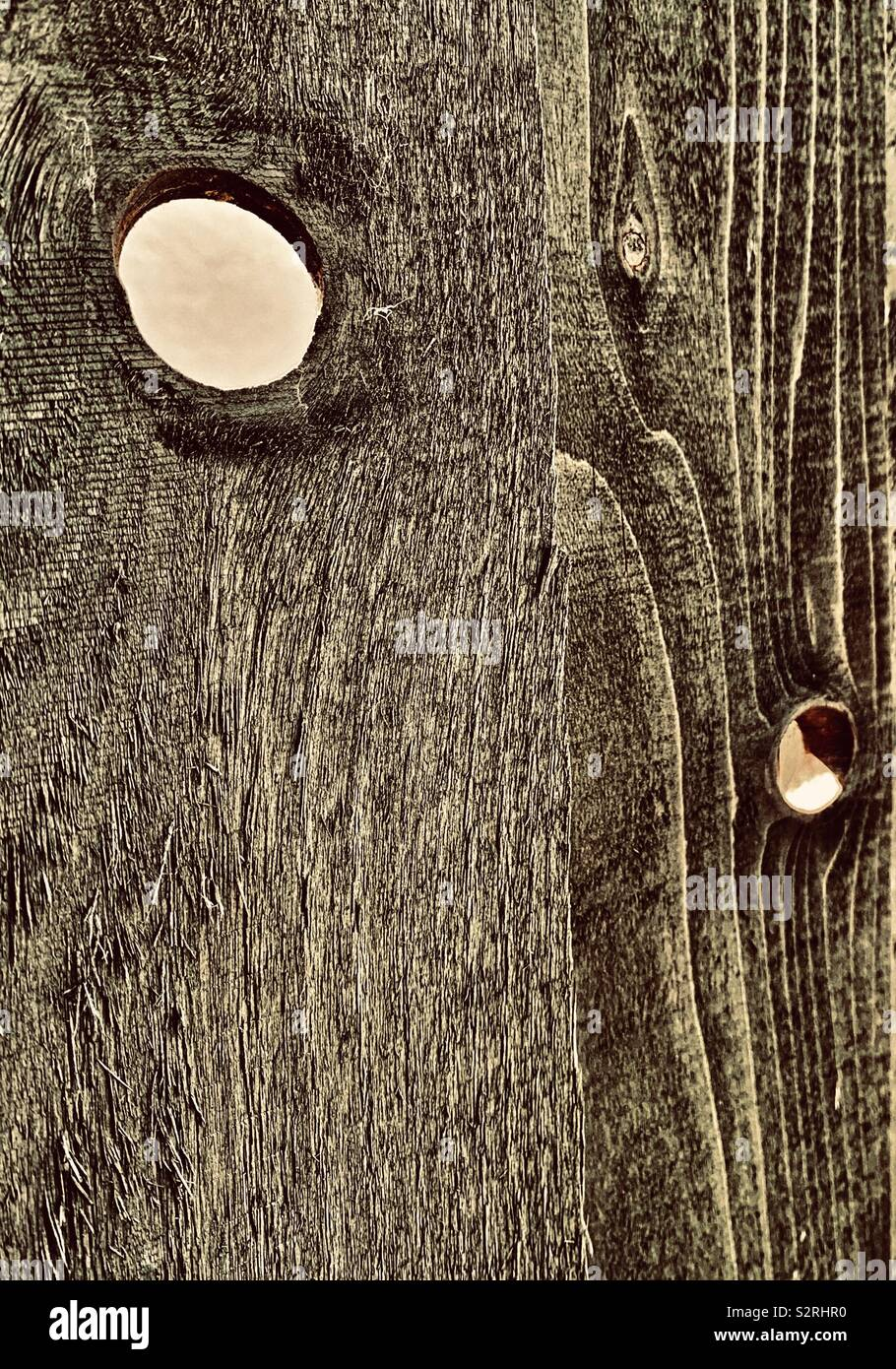 Section of grainy wooden fence with two knot holes - Stock Image