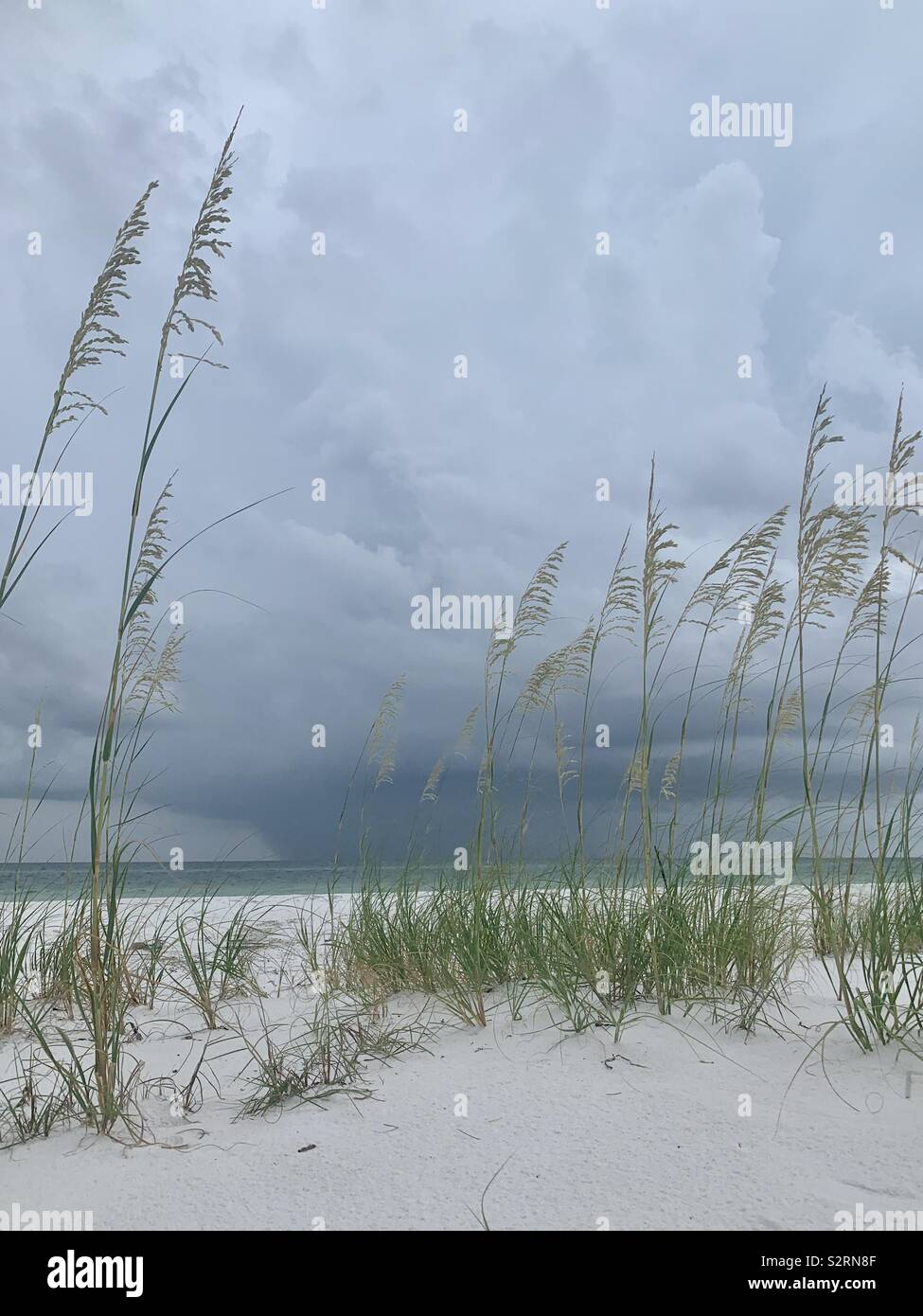 Seascape with storm clouds and rain, beautiful white sand and dunes with grass - Stock Image