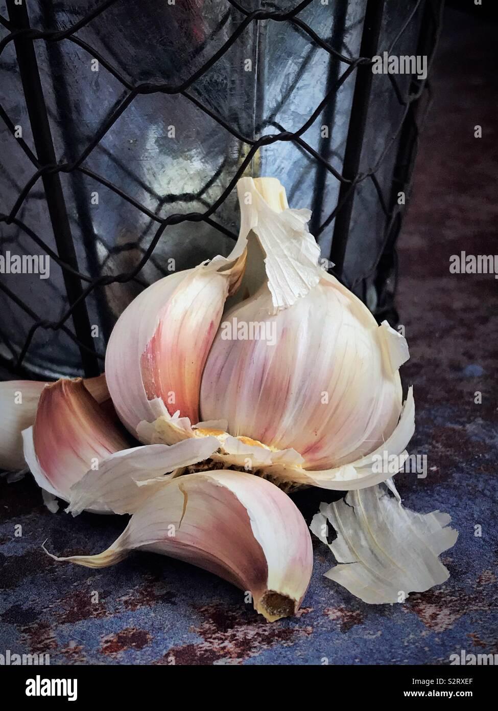 Garlic bulb broken open against a vintage metal pot. - Stock Image