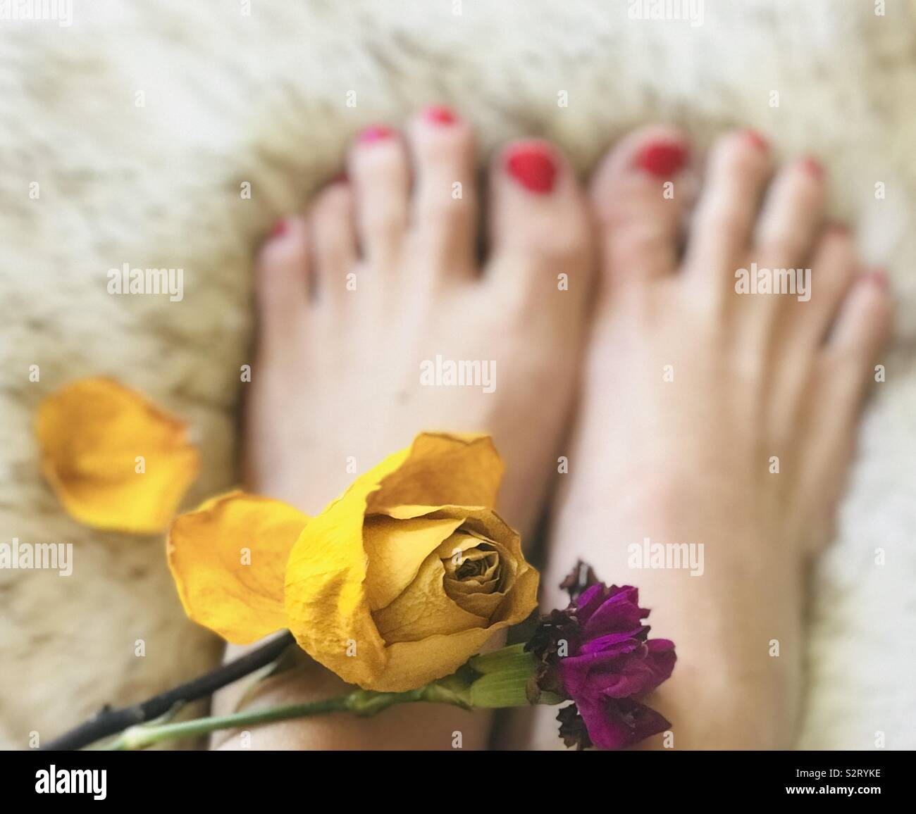 Flowers On Feet High Resolution Stock Photography And Images Alamy