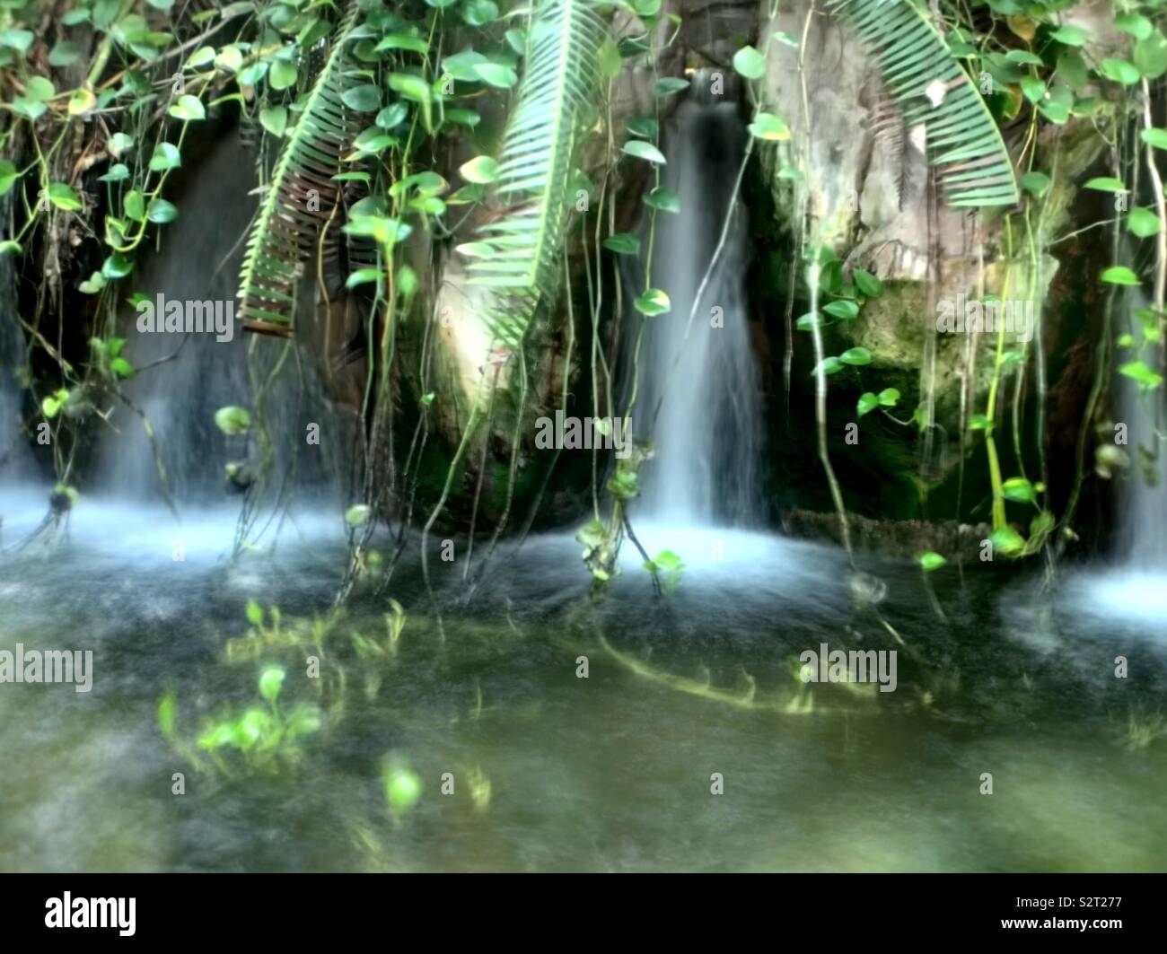 Waterfall at the New Orleans aquarium - Stock Image