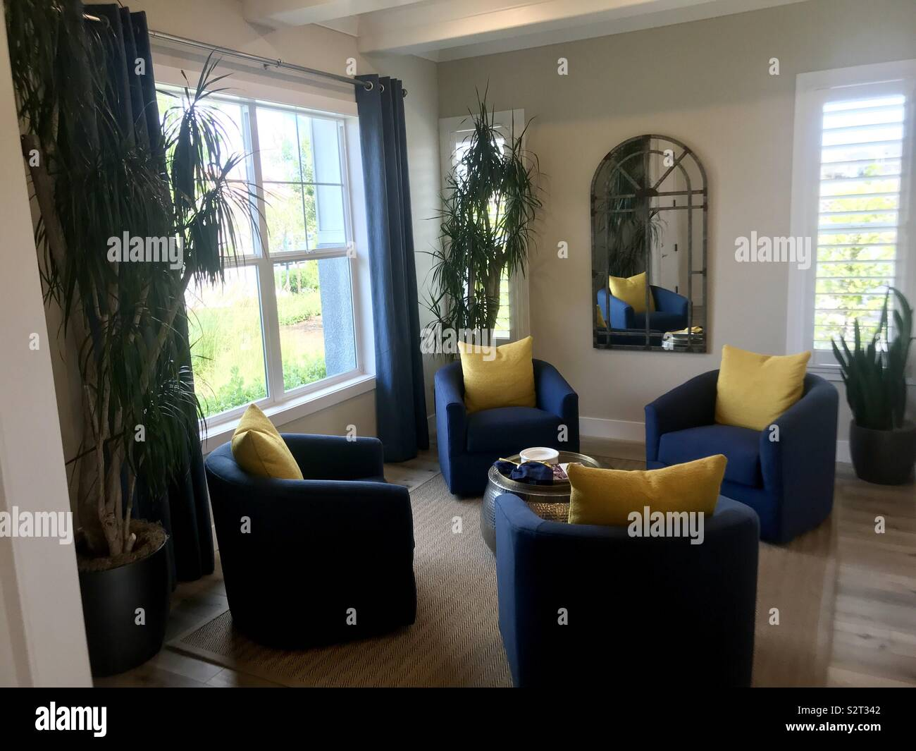A room decorated with brightly colored furniture of blue and yellow with plants - Stock Image