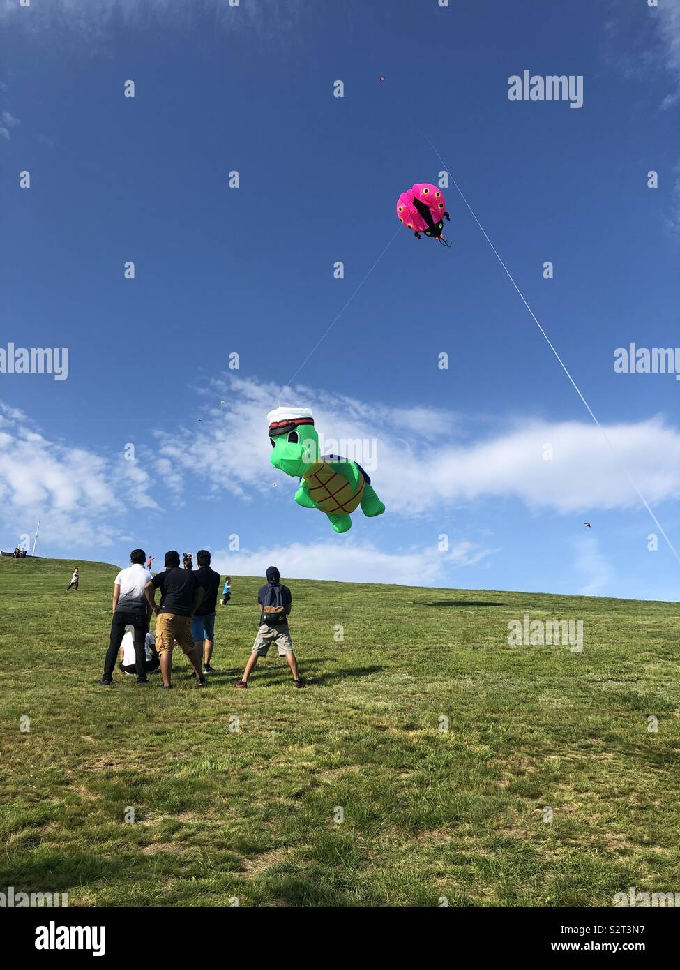 Kite fest Stock Photo