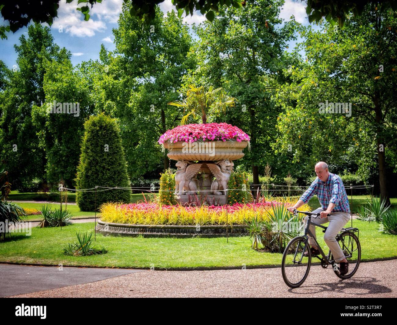 A senior man rides a bicycle through the English Gardens in Regent's Park London on a hot sunny summer day - Stock Image