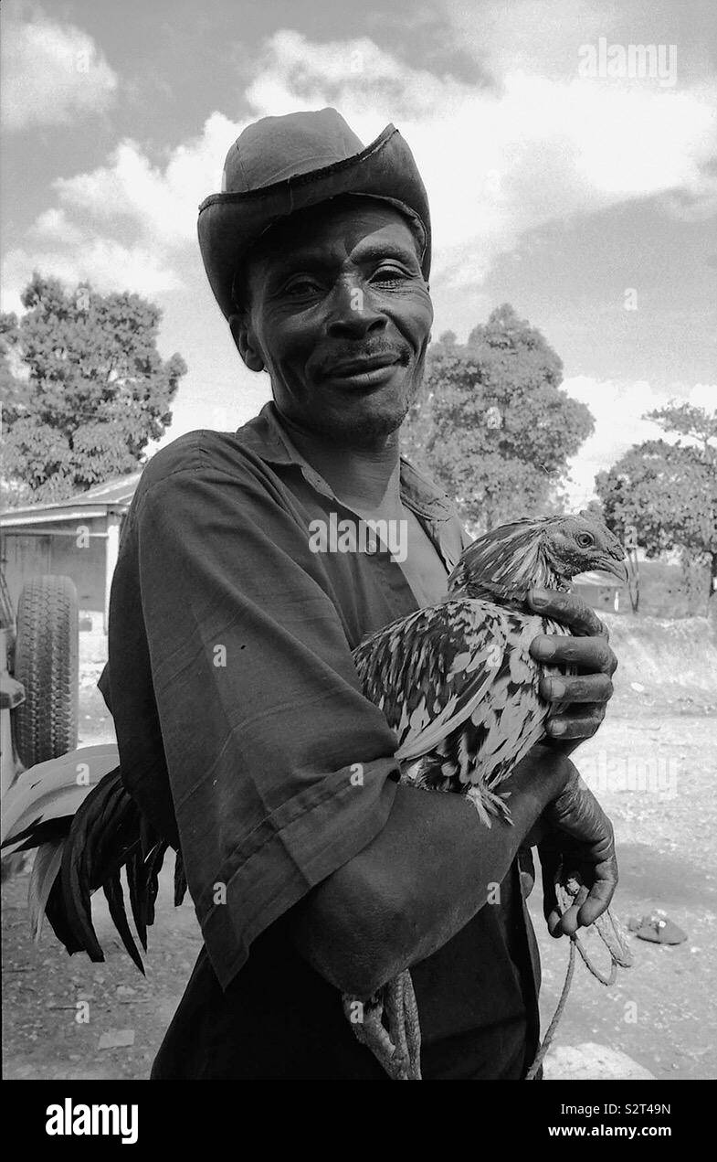peasant with a rooster in Haiti - Stock Image