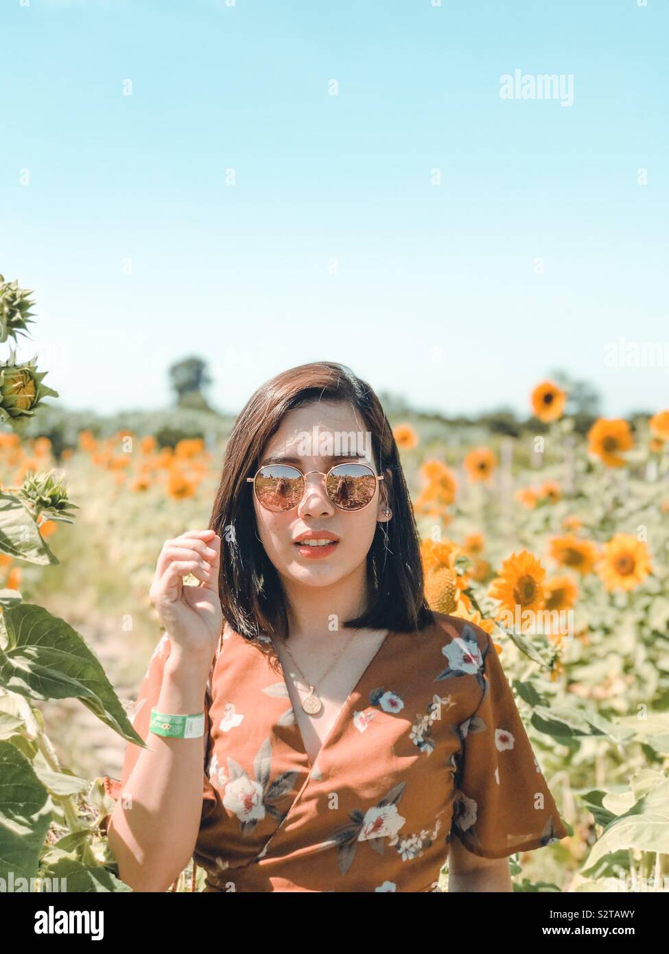 """""""Even on the darkest days, I will stand tall and find the sunlight."""" 🌻 Stock Photo"""