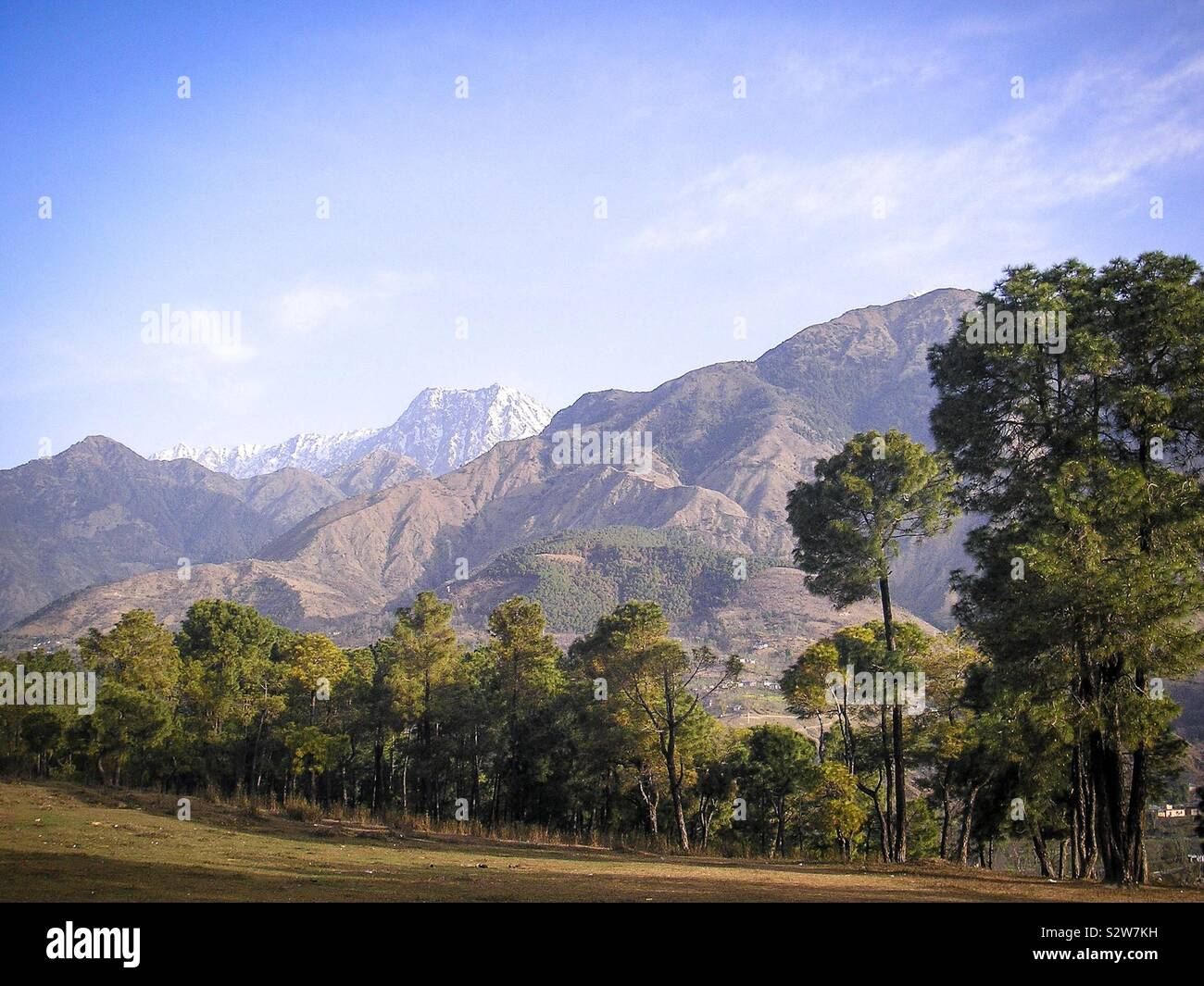 Scenic landscape beside a country road in the Dauladhar mountains of the Himalayan foothills, near Dharamsala, Himachal Pradesh, north India Stock Photo
