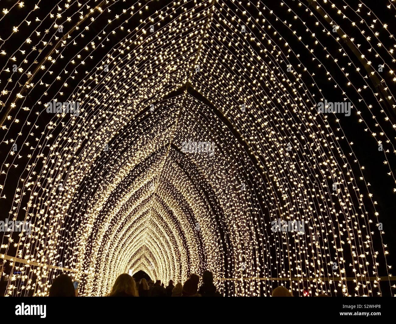 Cathedral of light at Kew Gardens Christmas at Kew 2018 illuminated trail, London, UK Stock Photo